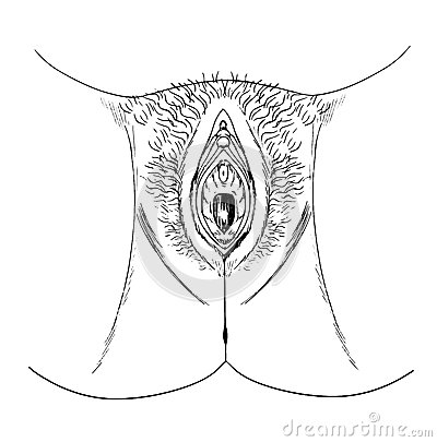 Rabos, meu vaginal clip art dream job fulfilfed