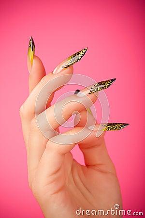 Human fingers with beautiful fingernail