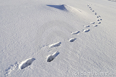 human-footprints-deep-snow-17724327.jpg
