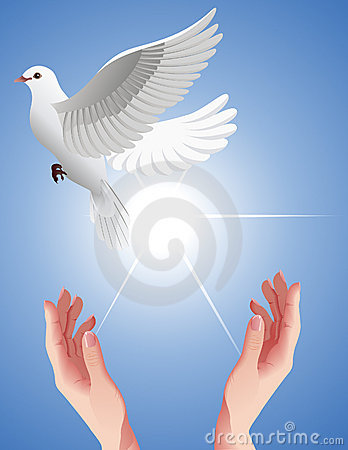 Human_hands_setting_free_white_dove