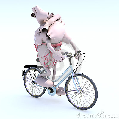Human heart riding a bycicle