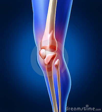 Free Human Knee Pain Stock Photography - 23315772
