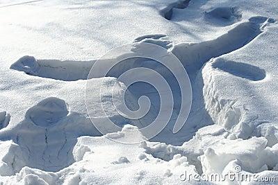 Human print on snow