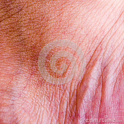 Human skin closeup background.