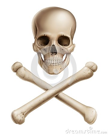 Free Human Skull And Cross Bones On White Background Royalty Free Stock Image - 133717866