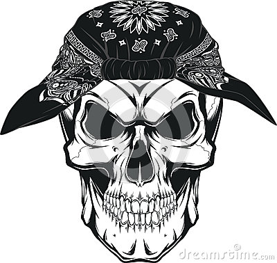 human skull stock vector image 56777605