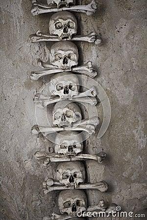 Human skulls with bones
