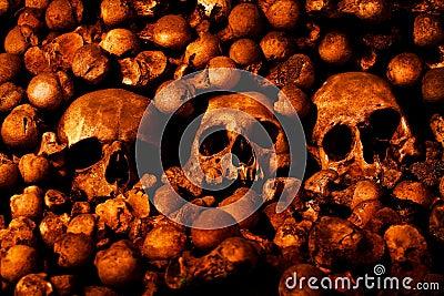 Human skulls and other bones