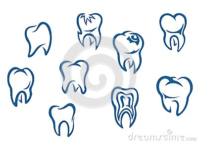 Human teeth set