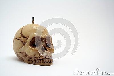 Humans skull1