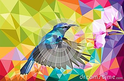 Humming bird vector lowpoly Vector Illustration