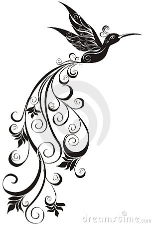 Hummingbird. Vector illustration