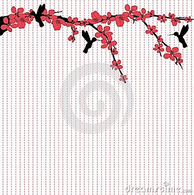 Hummingbirds flying around cherry blossom