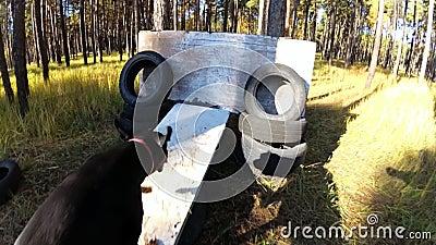 Hundedobermann springt eine Sperre auf einem Übungsfeld, eine Ansicht die erste Person stock video
