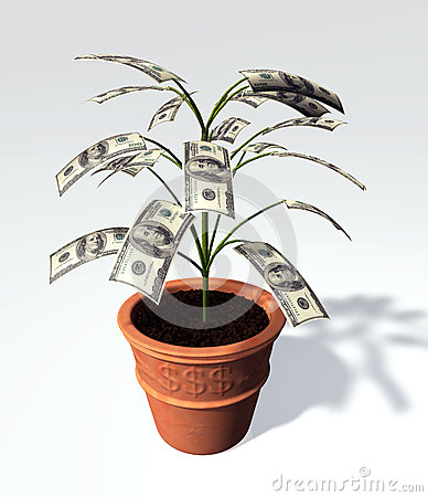 A hundred dollars banknote small tree in a vase
