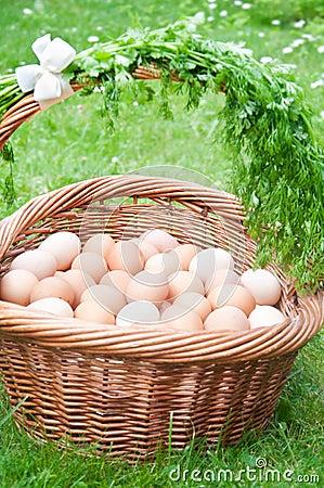 Hundred eggs