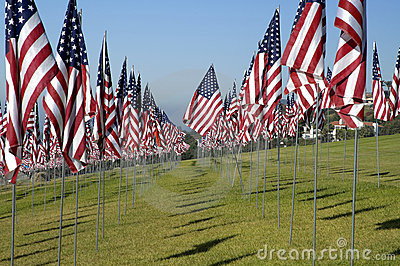 Hundreds of American Flags
