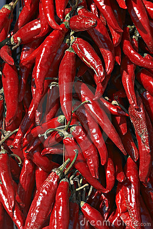 Hungarian red hot pepper