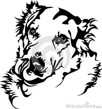 Hunger dog