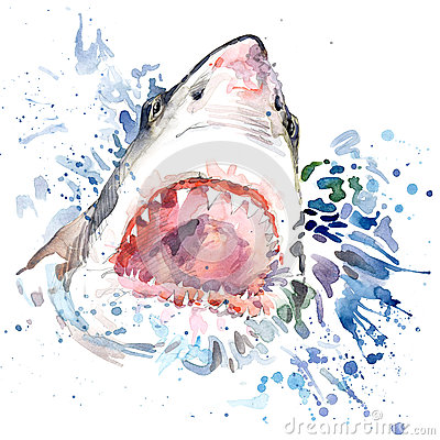 Free Hungry Shark T-shirt Graphics. Shark Illustration With Splash Watercolor Textured Background. Unusual Illustration Watercolor Hung Royalty Free Stock Images - 56428389
