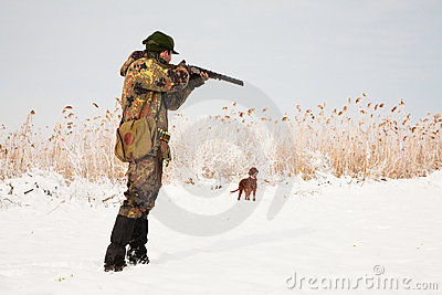 Hunter aiming at the hunt. Hunting dog waiting