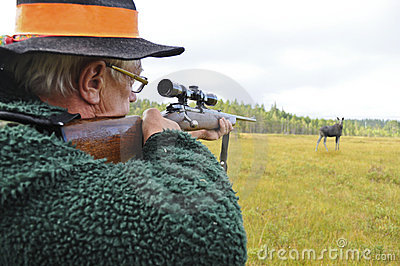 Hunter aiming at moose