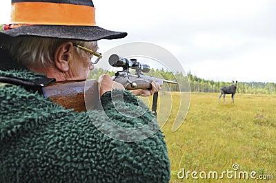 Hunter aiming at moose
