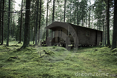 Hunter s Cabin in Forest