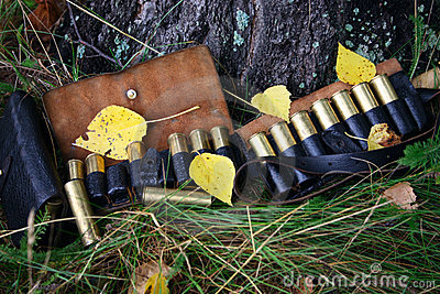 Hunting cartridges covered leaf