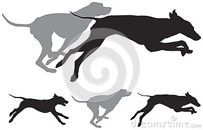 Hunting Dogs Run Vector Silhouettes Stock Photography ...