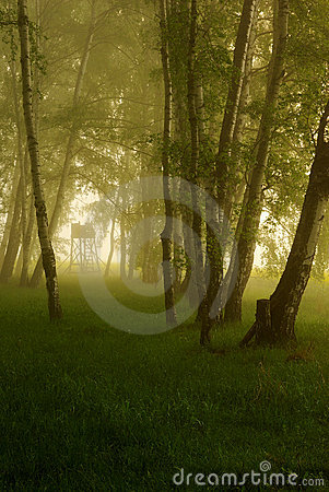 Free Hunting Hide Stock Photography - 9204122