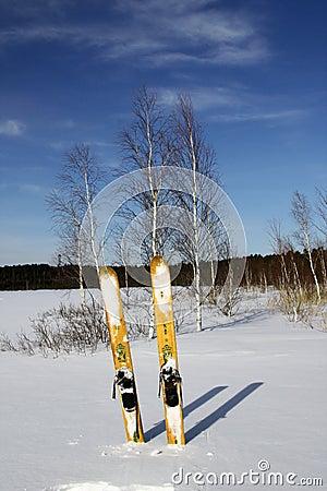 Hunting Skiing
