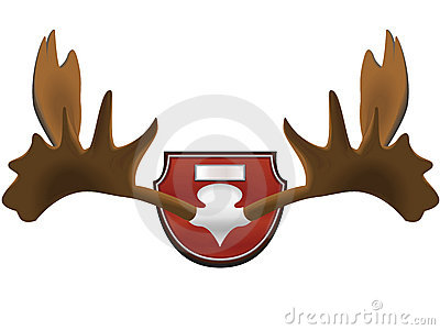 Hunting trophy - horns