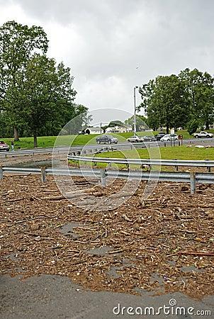 Hurricane Irene aftermath in the Philadelphia area Editorial Stock Photo