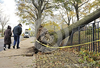 Hurricane Sandy Editorial Photo