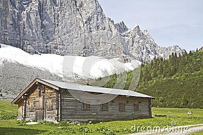 Hut in Austria