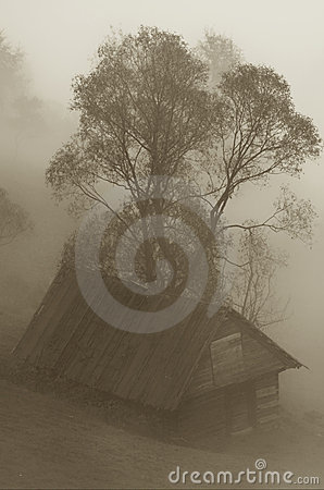 Hut in the mist