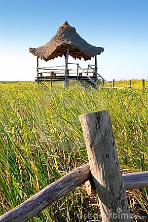 Hut palapa in mangrove reed wetlands