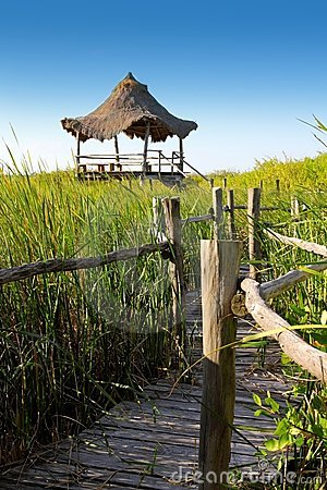 Hut palapa in mangrove reed wetlands
