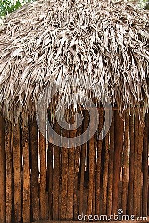 Hut palapa mexican jungle Mayan house roof wall