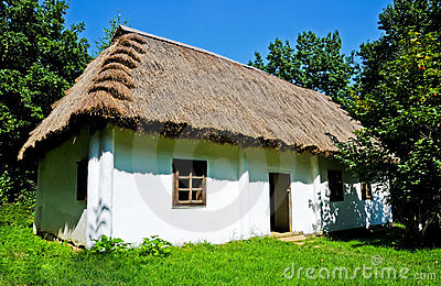 Hut and thatch roof