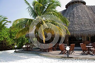 hut on the tropic island