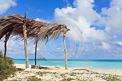 Hut on a Tropical Beach