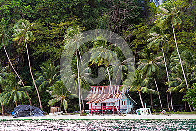 Hut on tropical beach