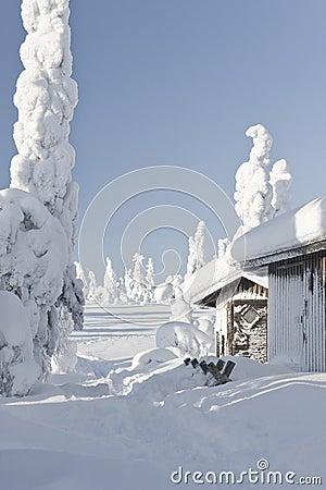 Huts on winter landscape
