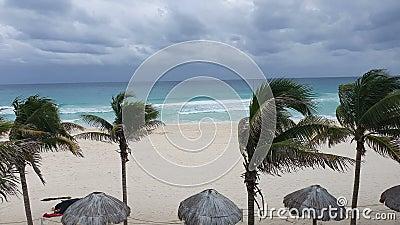 Huty i palmy na tropikalnej piaszczystej plaży w Cancun miasta quintana roo w Meksyku, nad morzem Morza Karaibskiego zbiory wideo