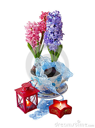 Hyacinths and red flashlights