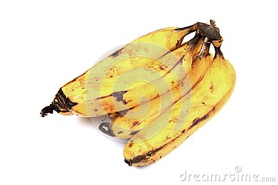 Hybrid bananas