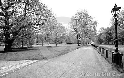 Hyde park, black & white shot