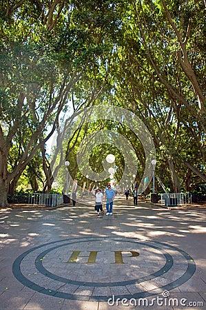 Hyde Park Sydney Editorial Image